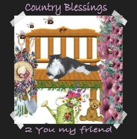 Country blessings coolgraphic
