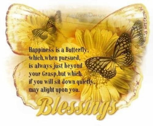 Happiness is butterfly coolgraphic