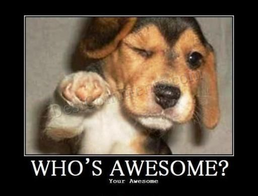 Who's awesome