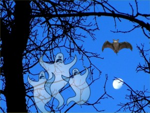 Groovy Halloween Pic