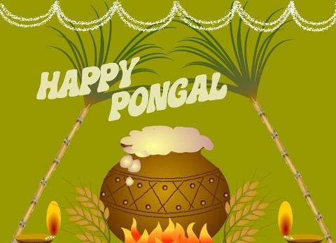 Happy pongal greetings festival pongal graphics99 related images happy pongal m4hsunfo