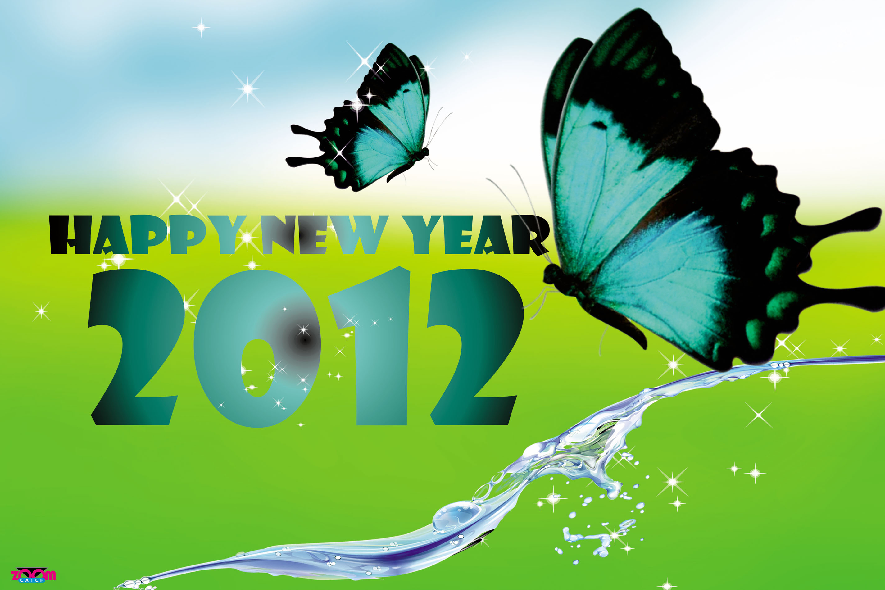 Beautiful New Year 2012 Graphic