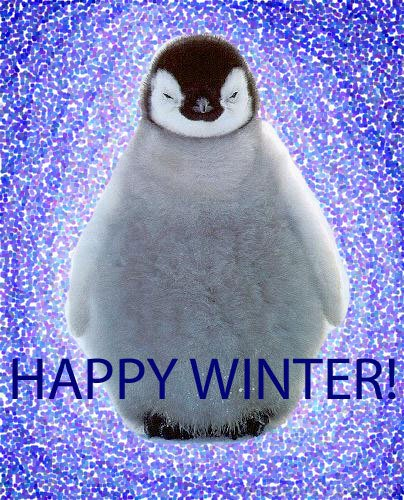 Happy Winter Picture
