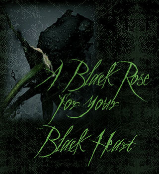 Blck Rose for Your Black Heart