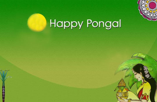 Glorious Pongal Greeting Card