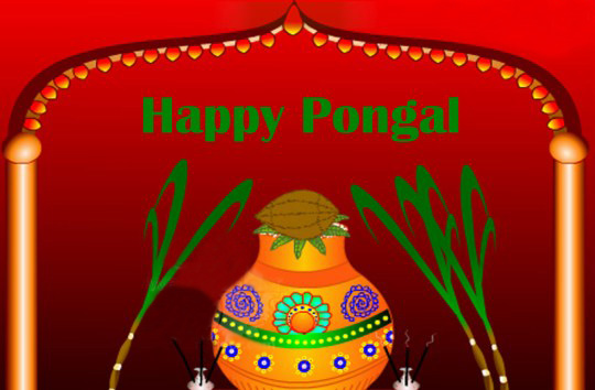 Happy Pongal Ecard for Facebook