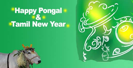 Wonderful Happy Pongal Ecard