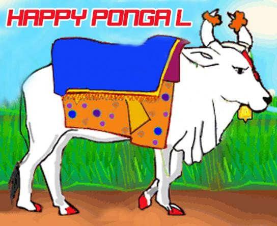 Happy Pongal Graphic