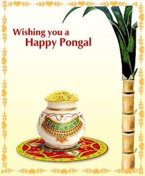 Happy Pongal Scrap for Orkut