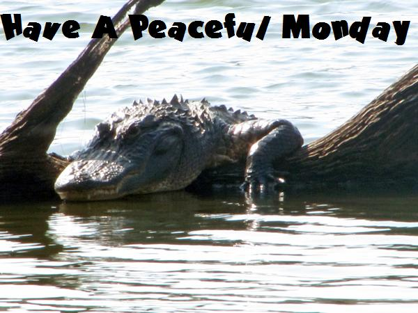 Wishing You A Peaceful Monday