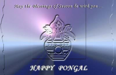 Pongal Blessings for You