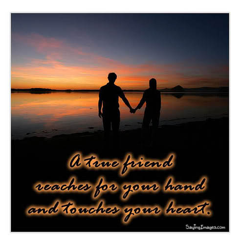 Friendship Quote ~ A true friend reaches for your hand and touches your heart.