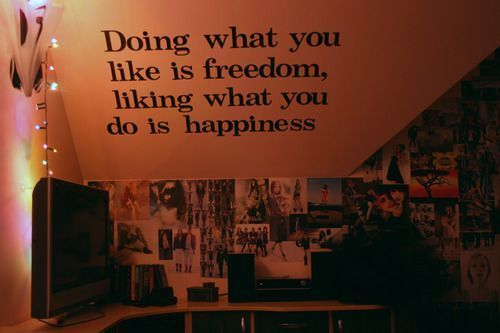 Life Hack Quote ~ Doing what you like is freedom. Liking what you do is happiness
