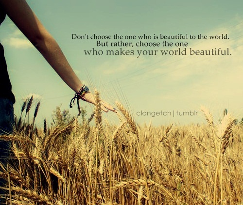 Life Hack Quote : Don't choose the one who is beautiful to the world.