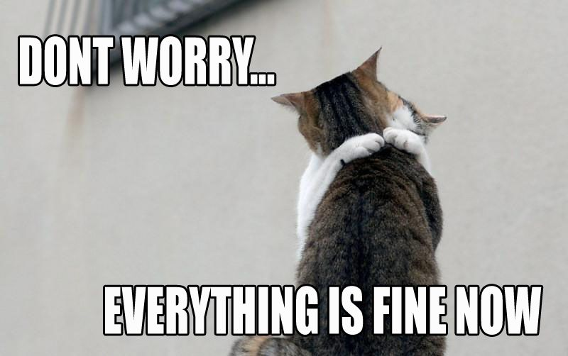 Friendship Quote ~ Don't Worry, Everything Is Fine Now