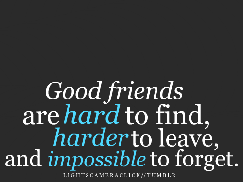 Friendship Quote ~ Good Friends Are Hard To Find