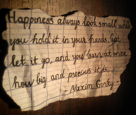 Happiness always looks small while you hold it - Happiness Quote