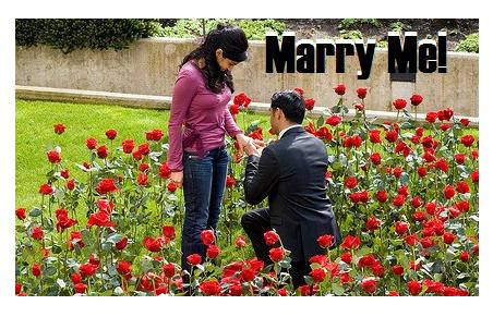 Marry Me Greetings: Happy Propose Day