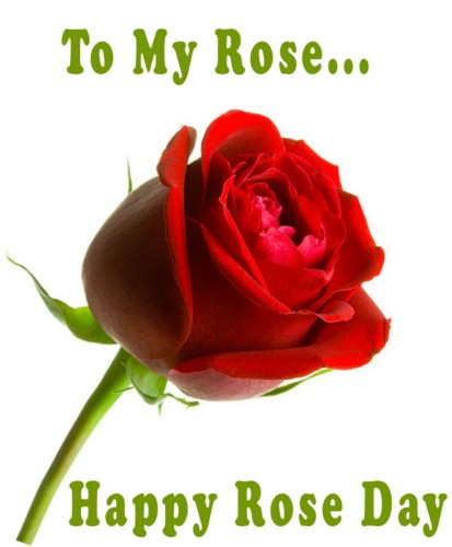 Rose To My Rose: Happy Rose Day