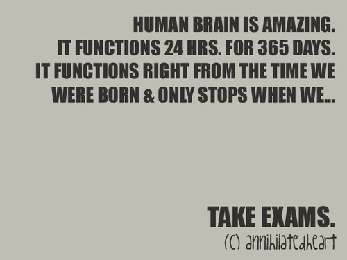 Human Brain Is Amazing. | Funny Quote