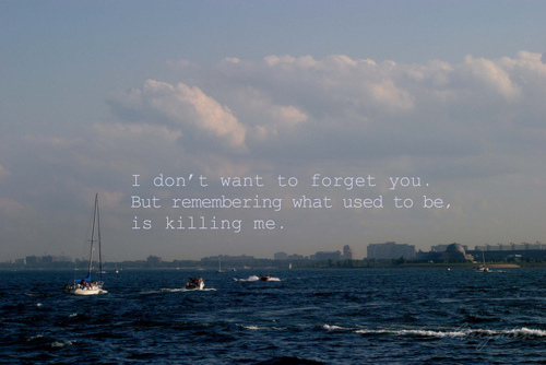 I Don't Want to Forget You - Fact Quote