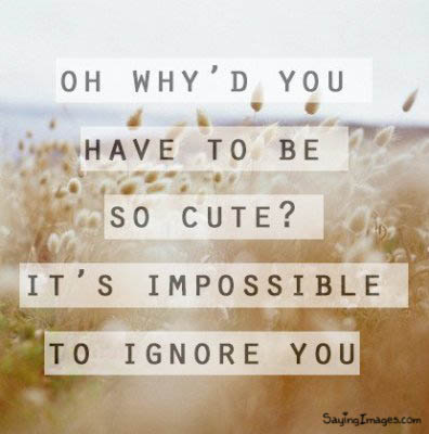 Why do you have to be so cute? : Compliment Quote
