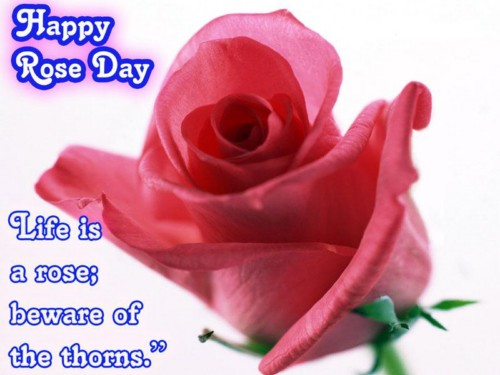 Happy Rose Day: Graphic for Myspace