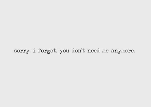 Sorry. I forgot. You don't need me anymore.- Love Quote