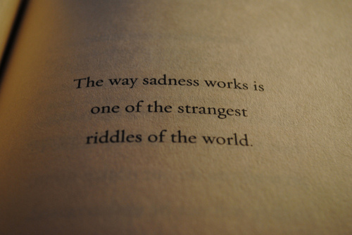 Quote : The way sadness works is one of the strange riddles of the world.