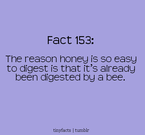 Fact Quote ~ The reason honey is so easy to digest is that it's already…