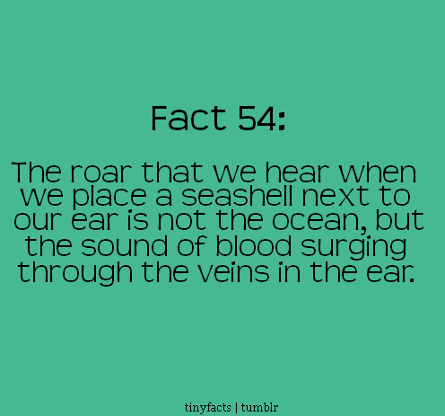 Fact Quote - The roar that we hear when we place a seashell next to our…