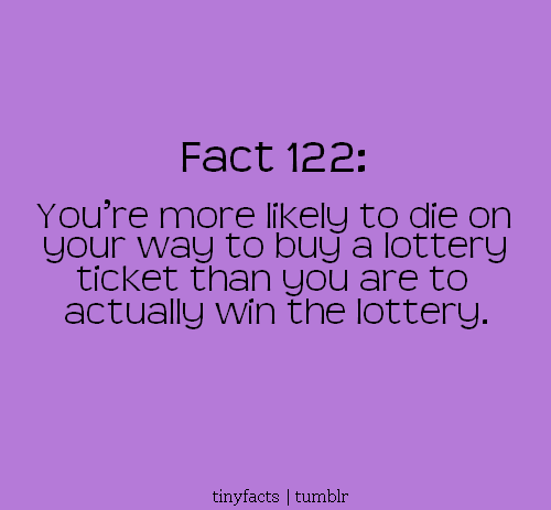 Fact Quote : You're more likely to die on your way to buy a lottery ticket than…
