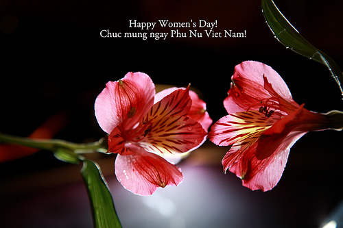 Happy Women's Day Graphic
