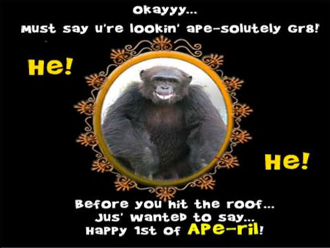 You Are Looking Ape - April Fools Day