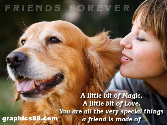 Friends Forever - Friendship Quote