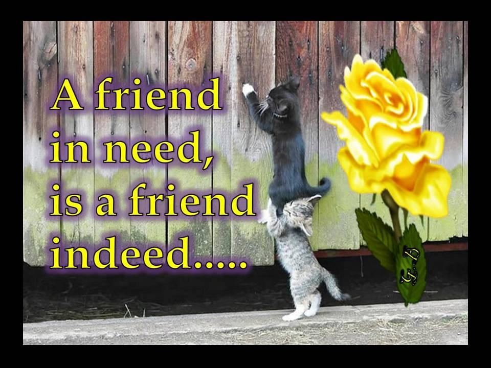 A Friend in Need is a Friend Indeed…