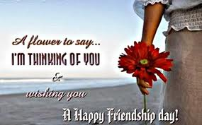 A Flower to say i'm thinking of you and wishing you happy friendship day