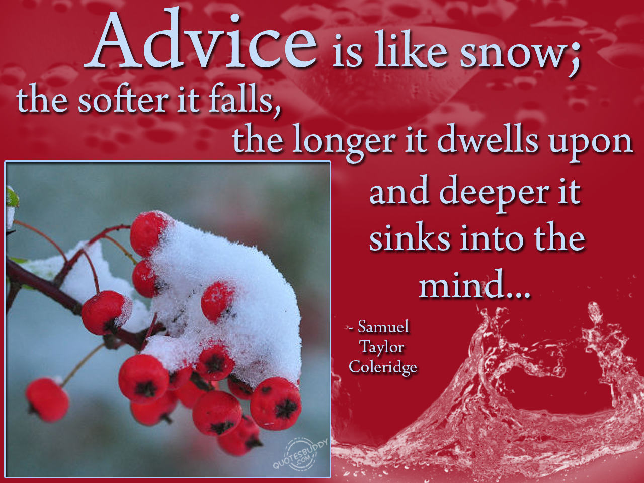 Advise is like snow Scrap for Orkut