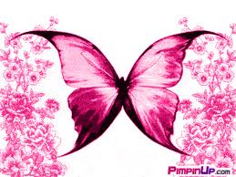 Awesome Pink Butterfly Image for Fb Share