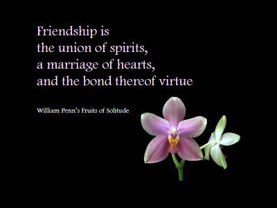 http://www.graphics99.com/friendships-is-the-union-of-spirits/