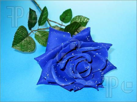 Blue Rose Greetings
