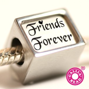 Friends Forever Graphic for Myspace