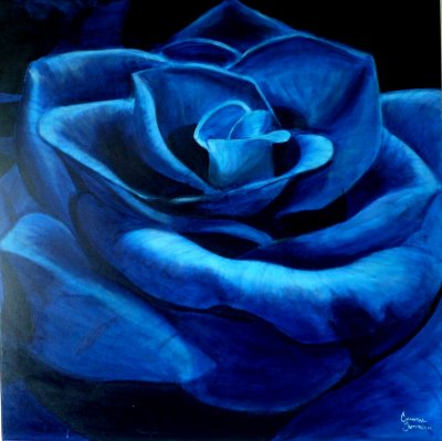 Blue Rose Graphic for Myspace