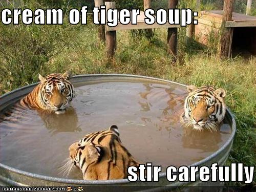 Cream of Tiger Soup