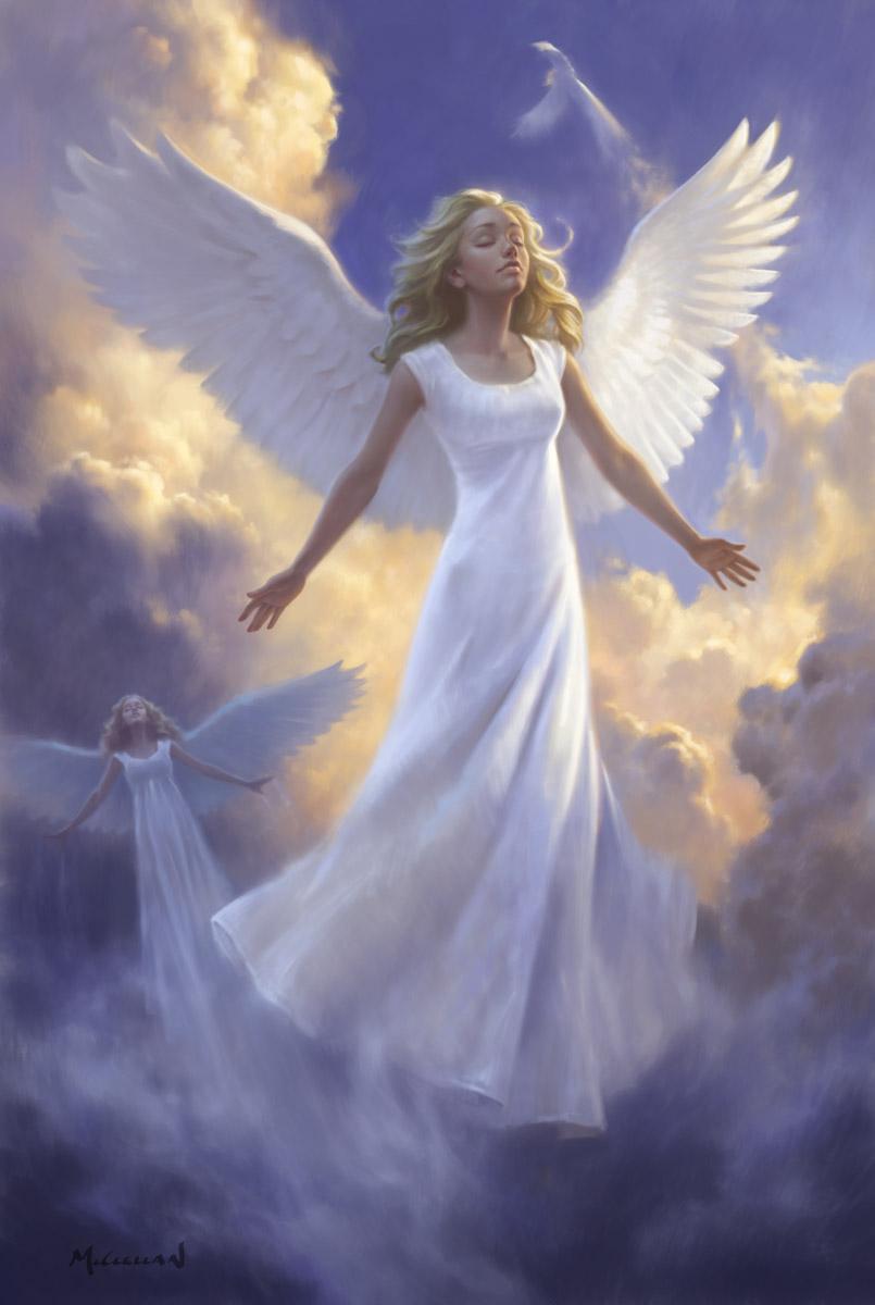DM angels Picture