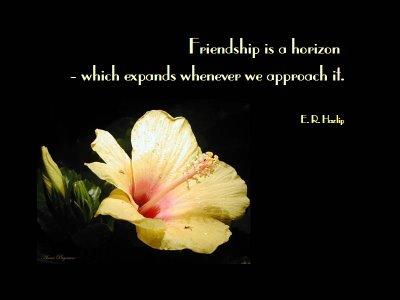 Friendship is a Horizon