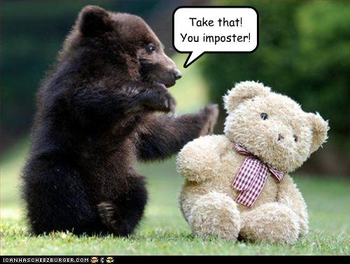 Take That You imposter Funny Bear Picture