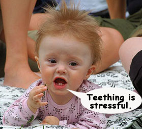 Teething is Stressful