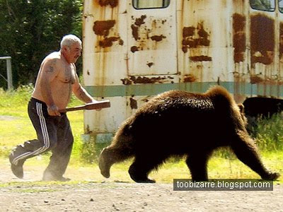 Funny Bear with a Man Picture