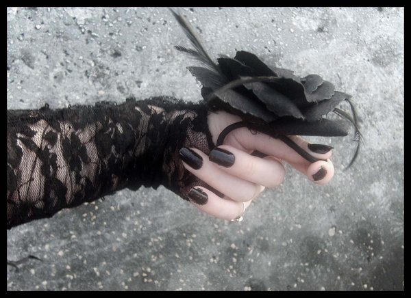Black Rose in Hand Graphic